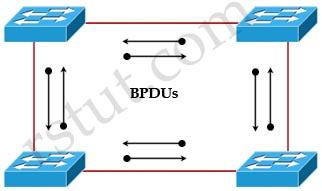 Bi-directional_BPDUs.jpg