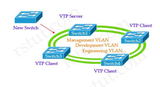 Implement_new_switch_VTP.jpg